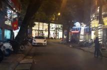 Bán nhà phố Ngõ Bà Triệu,kinh doanh khủng.295m2.MT 14m.Giá: 102tỷ
