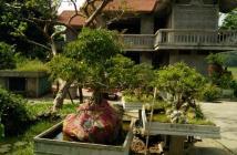 Chính chủ bán nhà vườn tại thị xã Sơn Tây, Hà Nội
