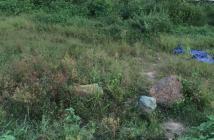 Bán đất xã Phương Tú, Ứng Hòa,Hà Tây. giá 18,5tr/m2. diện tích 98,5m2