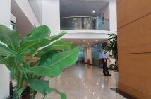 Hơn 30tỷ Khách sạn phố Trần Hưng Đạo 100m2,thu nhập khủng/thg