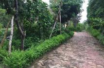 Nhà đất sổ đỏ chính chủ tại Hoà Lạc, DTT2400m2, MT22.5, MH61m, 14,79tỷ, cách CT LHL 250m.