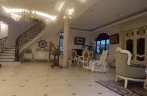 Bán BIỆT THỰ NHÀ VƯỜN Phố Vũ Đức Thận, Long Biên, HN,ô tô vào nhà. Diện tích 390 m2, 3 tầng, mặt