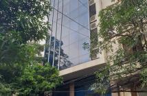Mặt phố Triệu Việt Vương, 100m x 9 tầng
