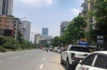 Nhà mặt phố Nguyễn Hoàng, Khu vực kinh doanh cực sốt