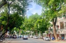 Hiếm có, Bán mặt phố Bà Triệu, Quận Hoàn Kiếm 200m2, mặt tiền 6,3m, chỉ 58 tỷ