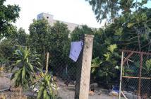 Cần bán nhà vườn xã Phước Đồng, Nha Trang, Khánh Hòa, 623 m2 giá 3 tỷ