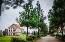 Chính chủ bán đất biệt thự The Phoenix garden 200m đường 22m giá đầu tư