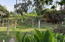 Bán lô đất cao đẹp tại Yên Bài, Ba Vì, Hà Nội DT 3322m2 có 400m2 đất ở, view cánh đồng