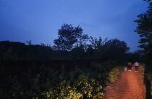 Bán đất nhà xưởng, nhà vườn, đường sân golf Hà Nội, Sóc Sơn, 4646m2, đường 6m, mặt tiền 100m, lô góc, giá 3 triệu/m2