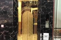 Phố Hoàng Liệt, thang máy, lô góc, gara, view siêu đẹp, kinh doanh, ở sướng.