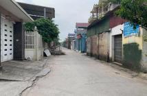 Bán gấp 115m tại Lạc nông - Mai đình - Sóc sơn LH:0966724576