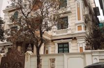 Bán Biệt Thự  có 1-0-2 Đẹp Nhất phố Trung Kính Cầu Giấy lô góc DT 300m MT 32m 0835151988