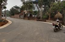 Chính chủ bán lô 100m đường nhựa ô tô tránh nhau Đồng Trúc, Thạch Thất