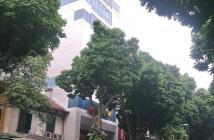 Mặt phố Bà Triệu Hoàn Kiếm, Lô góc 11 Tầng thang máy 300m2 MT9m 250tỷ